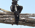 Rotating Heavy Duty Log Grapple 6.1 sq ft ROTO6065HD