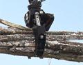 Rotating Heavy Duty Log Grapple 3.1 sq ft ROTO4048HD
